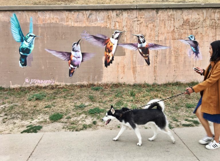 Hummingbirds mural by Joseph Martinez along Cherry Creek Trail in Denver