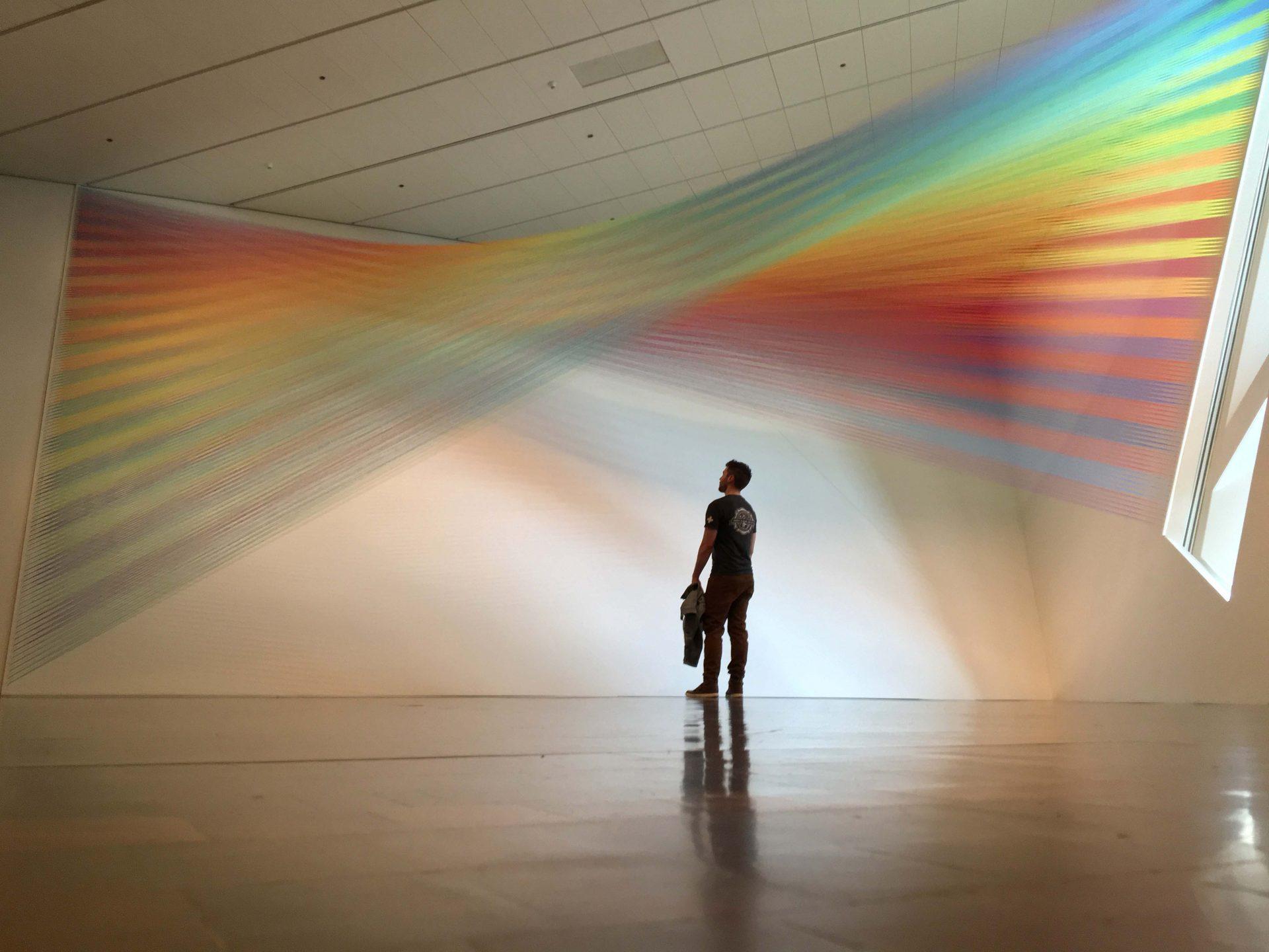 David Brookton Observes Plexus 36 at Denver Art Museum by Gabriel Dawe